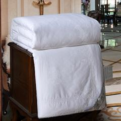 蚕丝被 200X230cm 全棉提花桑蚕丝四斤(白)