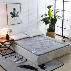 磨毛提花床垫 100*200   4斤 灰色