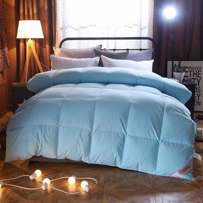 2020新款冬被-全棉羽绒被被子被芯 150cm×200cm/6斤 天蓝
