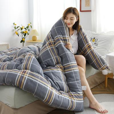 2020秋冬新品仿棉冬被被子被芯 150*200cm重3斤 格调