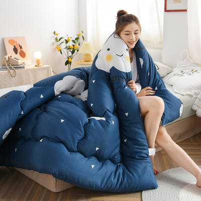 2020秋冬新品仿棉冬被被子被芯 150*200cm重3斤 阳光生活