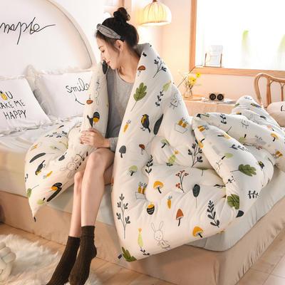 2020秋冬新品保暖针织棉印花冬被被子被芯 150*200cm重4斤 小鸟之家