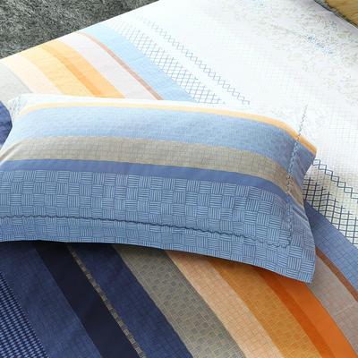 21支磨毛四件套系列(枕套) 48cmX74cm 莱维