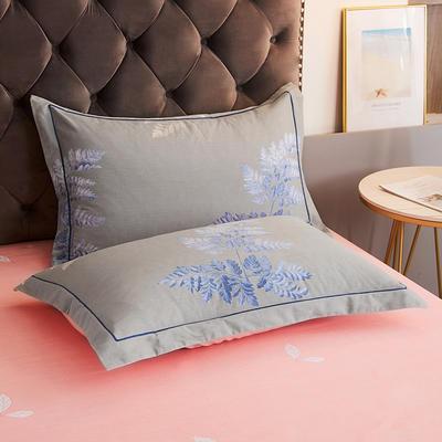 2020新款21支加厚全棉生态磨毛系列单枕套 48cmX74cm/对 兰芝梦