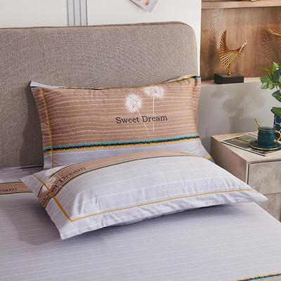 2020新款21支加厚全棉生态磨毛系列单枕套 48cmX74cm/对 蒲公英