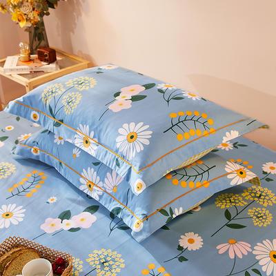 2021新款加厚全棉印花系列单枕套 48cmX74cm/对 舒雅风情 兰