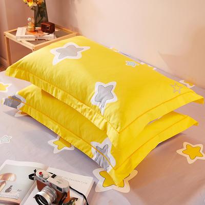 2021新款加厚全棉印花系列单枕套 48cmX74cm/对 夏日神话-灰