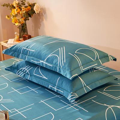 2021新款加厚全棉印花系列单枕套 48cmX74cm/对 休闲人生 兰
