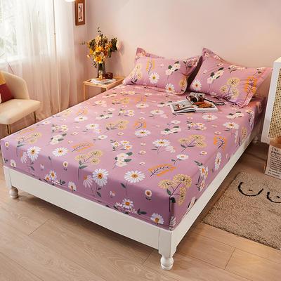 2021新款加厚全棉印花系列单床笠 150cmx200cm 舒雅风情 紫