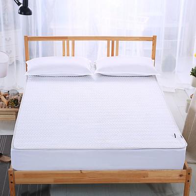 2018新款夹棉床笠单件加厚夹棉磨毛纯色 48*74cm单品枕套/对 白