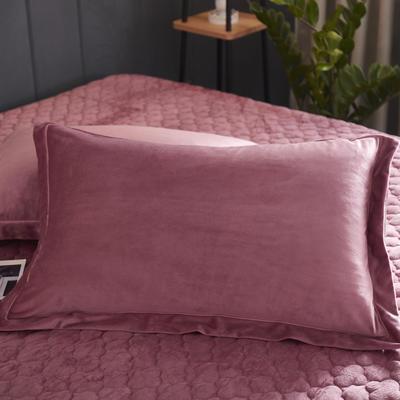 2019新款牛奶绒珊瑚绒法莱绒金貂绒水晶绒素色单枕套  拍摄场景1 48cmX74cm  一对 豆沙