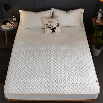 2019新款牛奶绒珊瑚绒法莱绒金貂绒水晶绒素色夹棉床笠  拍摄场景1 150cmx200cm 白色