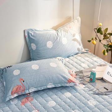 2020新款牛奶绒珊瑚绒法莱绒金貂绒水晶绒印花夹棉单枕套