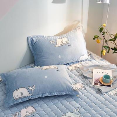 2019新款牛奶绒珊瑚绒法莱绒金貂绒水晶绒印花夹棉单枕套 48cmX74cm 一对 萌鲸-浅蓝