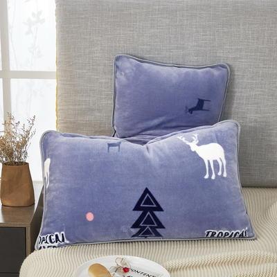 2019新款250克牛奶绒珊瑚绒法莱绒金貂绒单枕套  场景二 48cmx74cm/一只 才鹿