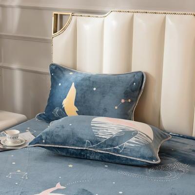 2020新款250克牛奶绒系列枕套 48cmX74cm/对 月光之恋