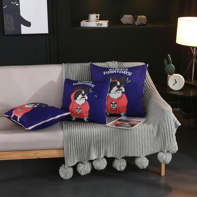 水晶超柔卡通印花抱枕被 40X40cm 巴哥