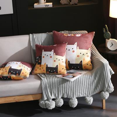 水晶超柔卡通印花抱枕被 40X40cm 猫咪家族