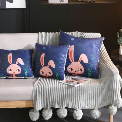 水晶超柔卡通印花抱枕被 40X40cm 兔小妹