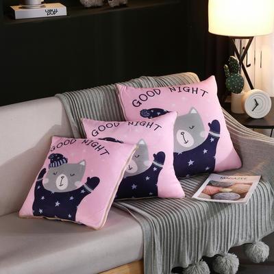 水晶超柔卡通印花抱枕被 40X40cm 晚安