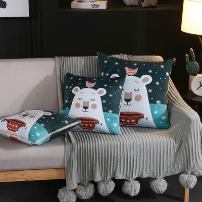 水晶超柔卡通印花抱枕被 40X40cm 温暖的冬天