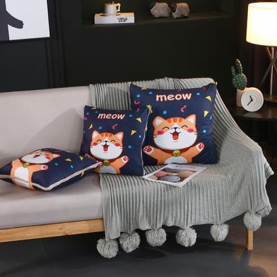 水晶超柔卡通印花抱枕被 40X40cm 招财猫