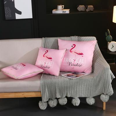 水晶超柔卡通印花抱枕被 40X40cm 字母火烈鸟