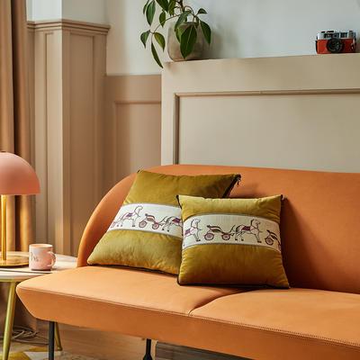 爱马仕高奢系列抱枕被 50X50cm 维也金