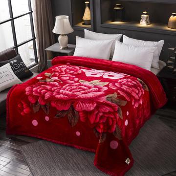 跑量双层加厚拉舍尔毛毯双人保暖盖毯学生宿舍单人绒毯子冬季毛毯被子