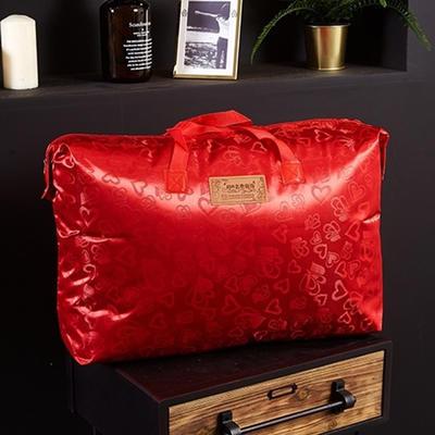 2019新品拉舍尔珊瑚绒毯子冬季加厚保暖双层法兰绒毛毯单人宿舍学生垫被子 100×125cm 6#大红包