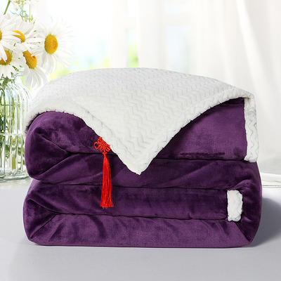 2020新款双层毛毯加厚珊瑚绒毯子宿舍保暖法兰绒礼品毯贝贝绒毯单双人盖毯 100*130cm 葡萄紫