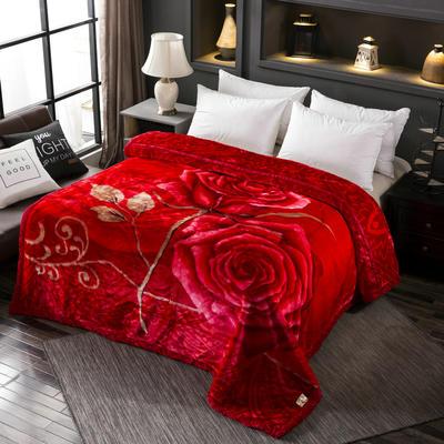 拉舍尔毛毯加厚双层被子单人双人珊瑚绒毯秋冬季床单学生婚庆盖毯 150x200cm重2.2kg 294大红