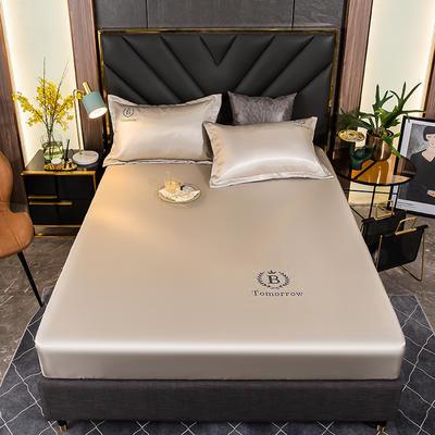 2021新品可水洗1.8床笠款冰丝席2米纯色冰丝席子床罩凉席三件套席梦思保护套 1.5m床笠三件套 裸肤咖