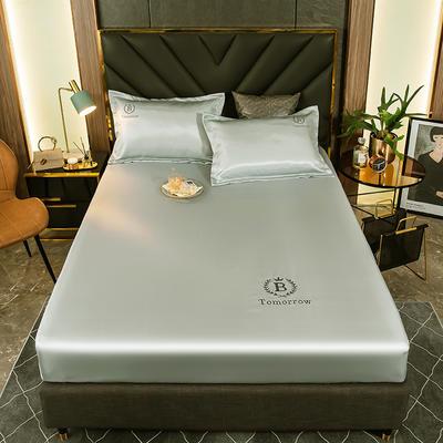 2021新品可水洗1.8床笠款冰丝席2米纯色冰丝席子床罩凉席三件套席梦思保护套 1.5m床笠三件套 水润青
