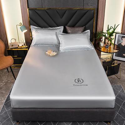 2021新品可水洗1.8床笠款冰丝席2米纯色冰丝席子床罩凉席三件套席梦思保护套 1.2m床笠两件套 银珠灰