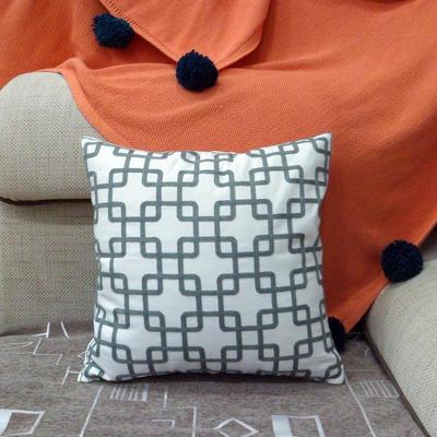 2020新款-全棉帆布简约风毛巾绣抱枕靠垫 45*45cm(含无纺布芯) DS (17)