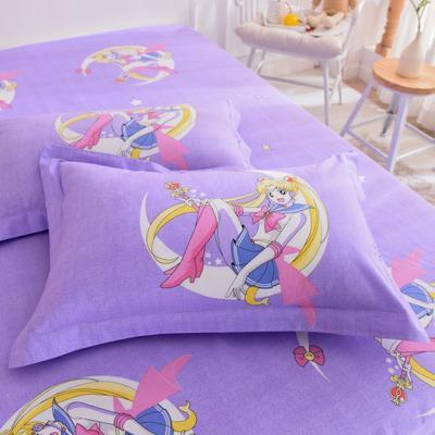 2019新款全棉大版单品枕套/个 48cmX74cm 水冰月