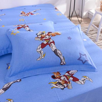 2019新款全棉卡通大版单品枕套 48cmx74cm/个 天马战士