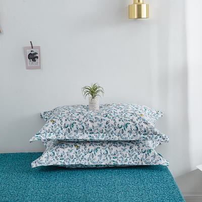 2020新款13070喷气花卉系列单品枕套 48cmX74cm/个 梦境花园