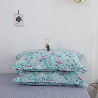2020新款13070喷气花卉系列单品枕套 48cmX74cm/个 淡香伊人(青)