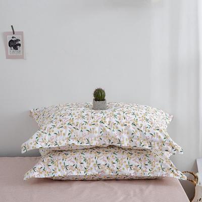 2020新款13070喷气花卉系列单品枕套 48cmX74cm/个 欢乐颂-米