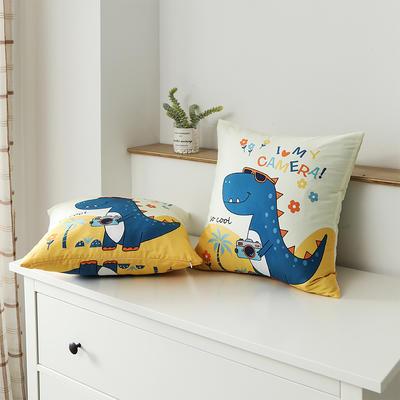 2020新款-全棉大版单品-抱枕 45x45cm/一只含枕芯 恐龙游记