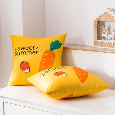 2020新款-全棉大版单品-抱枕 45x45cm/一只含枕芯 甜美