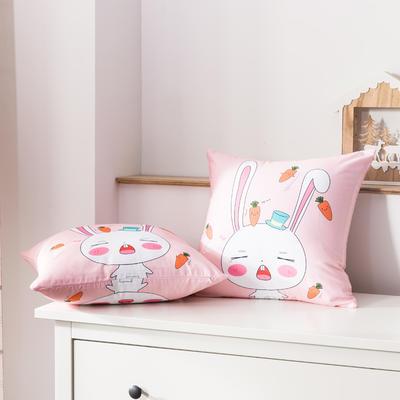 2020新款-全棉大版单品-抱枕 45x45cm/一只含枕芯 兔宝宝