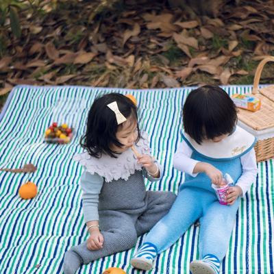 2019新款-防水野餐垫隔尿垫地垫1 140*220 蓝绿条纹