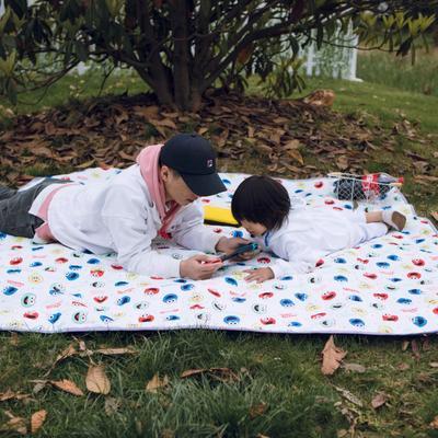 2019新款-防水野餐垫隔尿垫地垫2 140*220 彩色芝麻