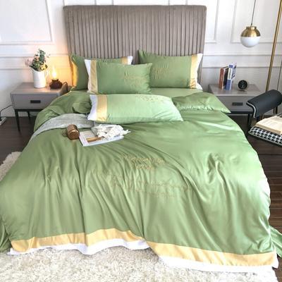 2020新款双面水洗真丝轻奢酒店风系列四件套-休斯顿(影棚图) 1.8m床单款四件套 豆绿