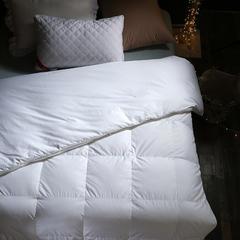 95%白鹅绒蚕丝羽绒二合一被 被子被芯 200X230cm6.9斤 蚕丝羽绒二合一(四季被)