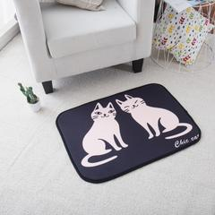 澳泽多功能门垫厨房垫飘窗垫 50*70cm 2只猫