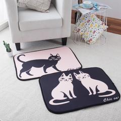 澳泽多功能门垫厨房垫飘窗垫 50*70cm 一只猫